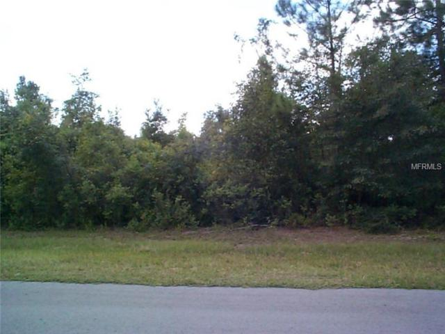 Parcel A&B Eagle Creek Road, Palatka, FL 32177 (MLS #P4701839) :: Cartwright Realty
