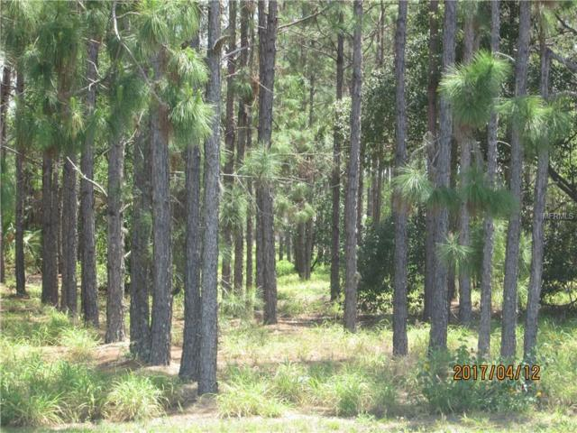 Scenic Highway S, Lake Wales, FL 33898 (MLS #P4715047) :: Godwin Realty Group