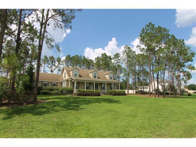 110 Sylvana Court, Auburndale, FL 33823 (MLS #P4716180) :: Gate Arty & the Group - Keller Williams Realty