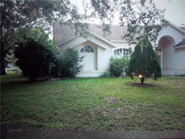 2620 Greywall Avenue, Ocoee, FL 34761 (MLS #P4716570) :: RealTeam Realty