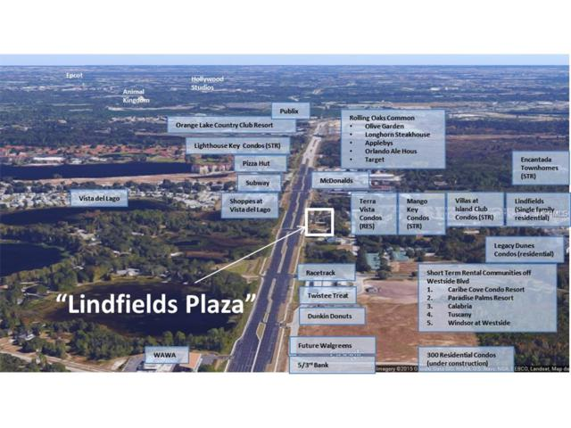 3281 Lindfields Boulevard, Kissimmee, FL 34747 (MLS #P4716993) :: Premium Properties Real Estate Services