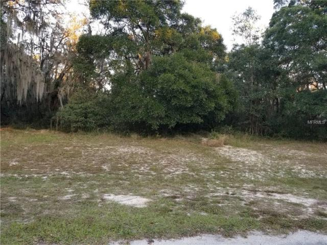 0 Southwood Oaks Street, Lithia, FL 33547 (MLS #P4718035) :: Delgado Home Team at Keller Williams