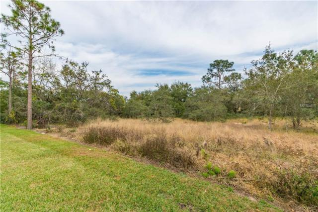 LOT 70 Sequoyah Drive, Haines City, FL 33844 (MLS #P4718401) :: The Duncan Duo Team