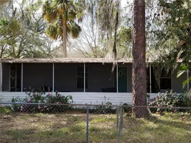 605 S Saddle Creek Farm Road, Lakeland, FL 33801 (MLS #P4719227) :: The Lockhart Team