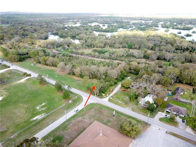 0 Fish Hatchery Road, Lakeland, FL 33801 (MLS #P4719259) :: Zarghami Group
