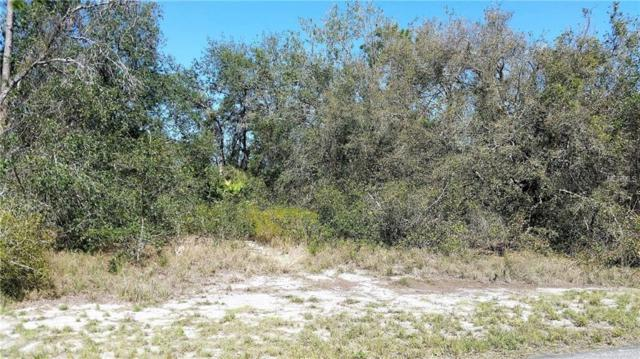 9037 Cypresswood Drive, Lake Wales, FL 33898 (MLS #P4719279) :: Alpha Equity Team