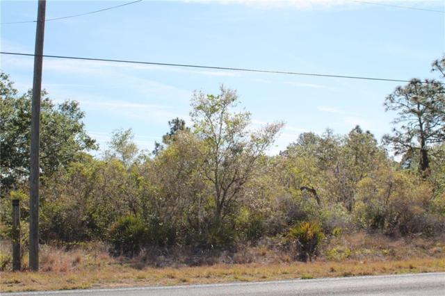 Tiger Lake Road, Lake Wales, FL 33898 (MLS #P4719591) :: G World Properties
