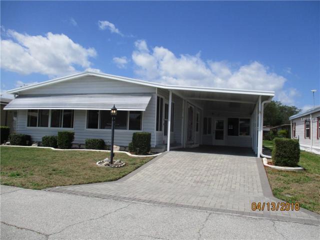 6669 Briarhill Drive NE, Winter Haven, FL 33881 (MLS #P4900132) :: The Duncan Duo Team