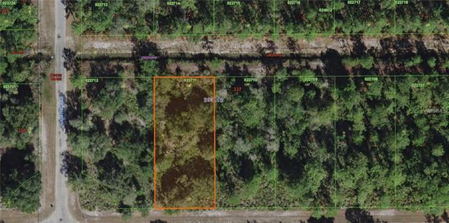Oleander Drive, Lake Wales, FL 33898 (MLS #P4900373) :: Team Pepka