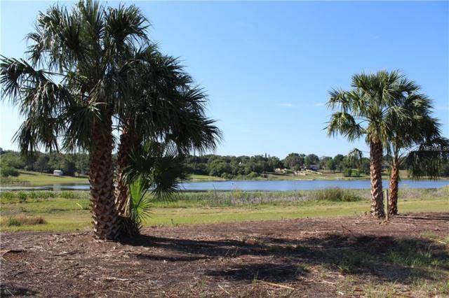 1127 N Lakeshore Boulevard, Lake Wales, FL 33853 (MLS #P4900517) :: The Duncan Duo Team