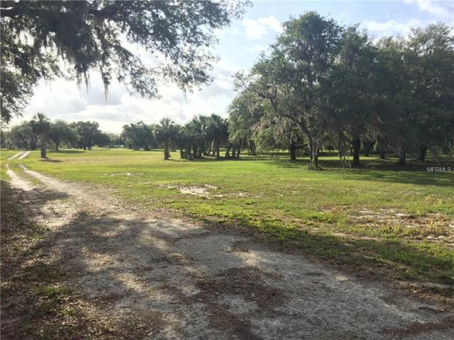 3911 Walk In Water Road, Lake Wales, FL 33898 (MLS #P4900595) :: Team Pepka