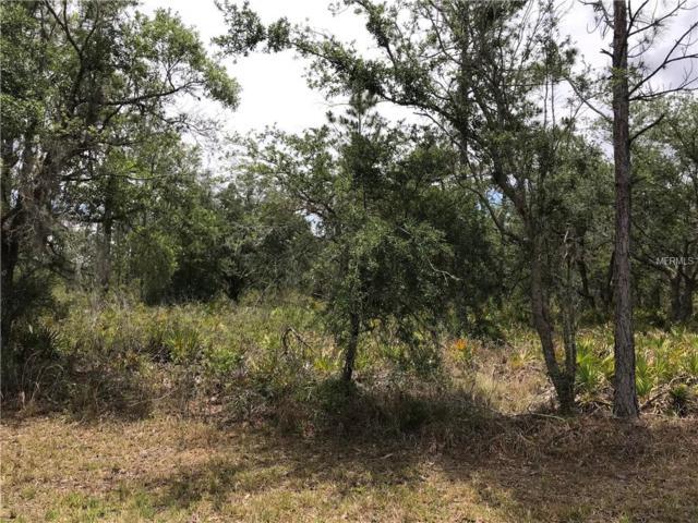 Oleander Drive, Indian Lake Estates, FL 33855 (MLS #P4900614) :: Team Pepka