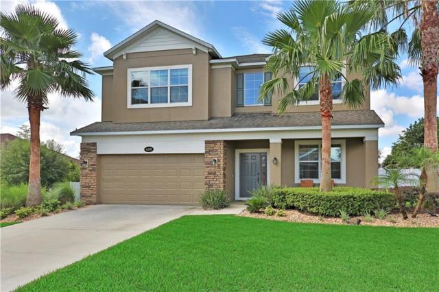 420 Amethyst Avenue, Auburndale, FL 33823 (MLS #P4901076) :: Gate Arty & the Group - Keller Williams Realty