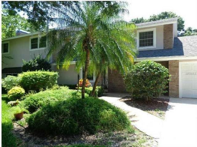 3817 Gaines Drive, Winter Haven, FL 33884 (MLS #P4901111) :: Team Pepka
