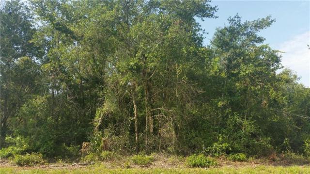 201 Alba Drive, Indian Lake Estates, FL 33855 (MLS #P4901542) :: The Lockhart Team