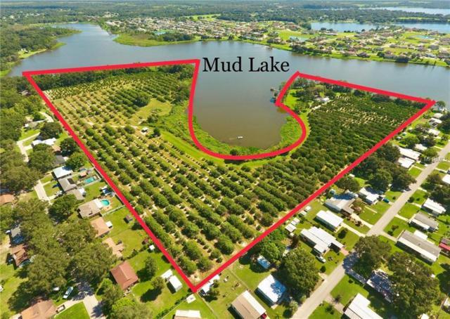5425 Duey Road, Polk City, FL 33868 (MLS #P4901924) :: Premium Properties Real Estate Services
