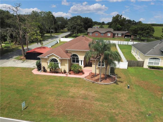 805 Lakeshore Drive, Polk City, FL 33868 (MLS #P4901974) :: Godwin Realty Group