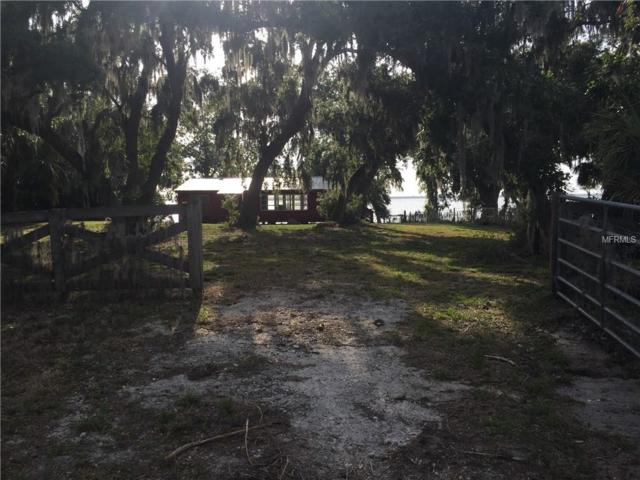 3911 Walk In Water Road, Lake Wales, FL 33898 (MLS #P4902000) :: Griffin Group