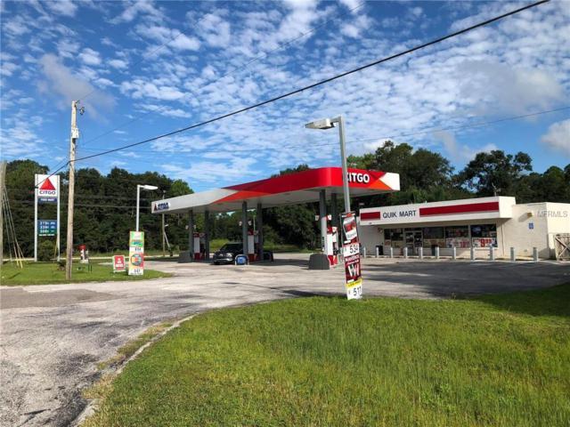 1154 N Galloway Road, Lakeland, FL 33810 (MLS #P4902508) :: Team Pepka