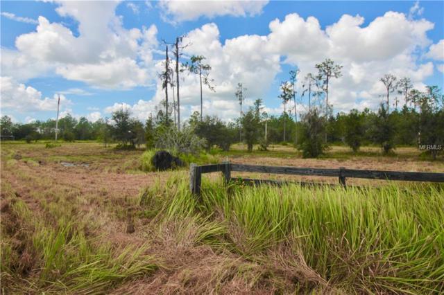 Singletary Road, Fort Meade, FL 33841 (MLS #P4902567) :: Dalton Wade Real Estate Group