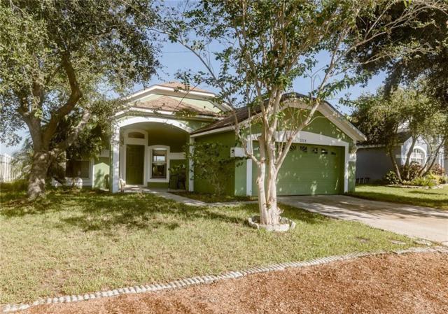 359 Sir Phillips Drive, Davenport, FL 33837 (MLS #P4902604) :: Bustamante Real Estate