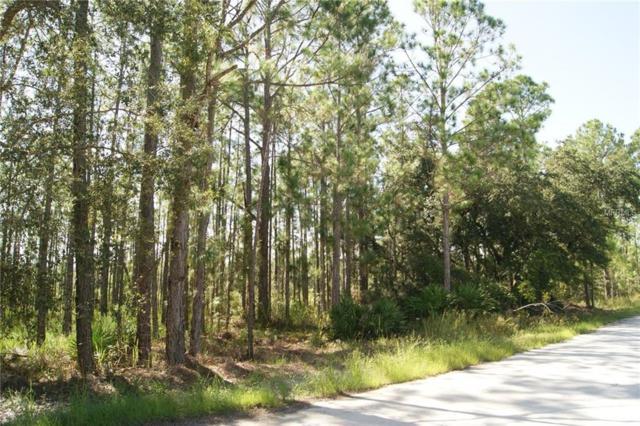 1966 R E Byrd Road, Frostproof, FL 33843 (MLS #P4902710) :: Griffin Group
