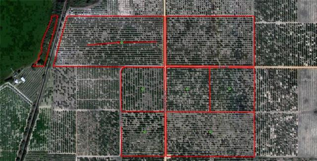 Lake Patrick Road S, Frostproof, FL 33843 (MLS #P4902738) :: The Duncan Duo Team