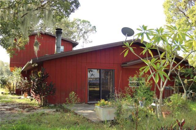 2519 Gabriel Road, Fort Meade, FL 33841 (MLS #P4903279) :: The Lockhart Team
