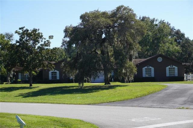 10620 Luscombe Court, New Port Richey, FL 34654 (MLS #P4903385) :: Mark and Joni Coulter | Better Homes and Gardens