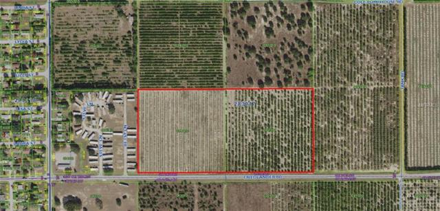 Friedlander Road, Babson Park, FL 33827 (MLS #P4903668) :: Revolution Real Estate