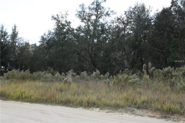 2689 N Ithica Road, Avon Park, FL 33825 (MLS #P4903717) :: Baird Realty Group