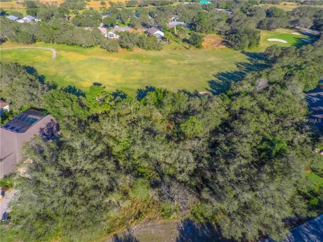1030 Old Cutler Road, Lake Wales, FL 33898 (MLS #P4903773) :: Griffin Group