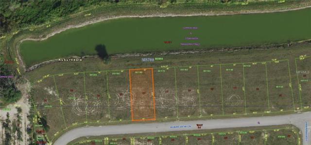 345 Adams View Lane, Auburndale, FL 33823 (MLS #P4903835) :: Gate Arty & the Group - Keller Williams Realty