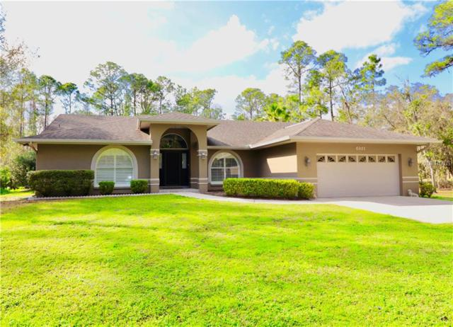 6901 Conley Drive, Polk City, FL 33868 (MLS #P4904748) :: Welcome Home Florida Team