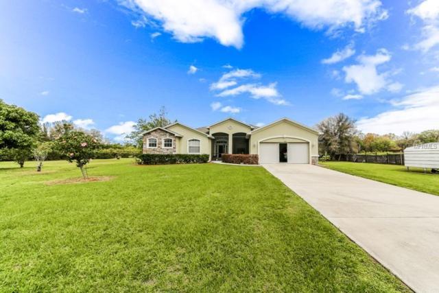 913 Avenue N SW, Winter Haven, FL 33880 (MLS #P4904903) :: Baird Realty Group