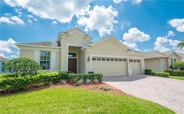 3001 Dayton Drive, Winter Haven, FL 33884 (MLS #P4905044) :: Cartwright Realty
