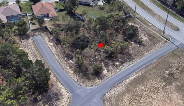 13252 Enchantment Drive, Spring Hill, FL 34609 (MLS #P4905161) :: The Duncan Duo Team