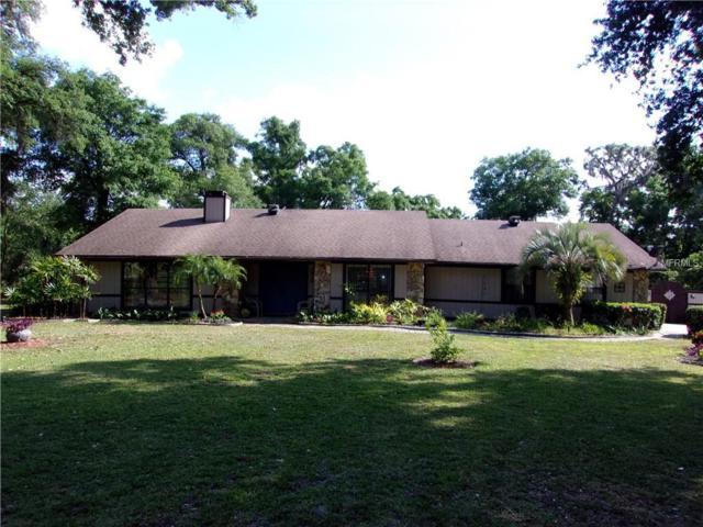 4322 Rolling Oak Drive, Lakeland, FL 33810 (MLS #P4905279) :: Gate Arty & the Group - Keller Williams Realty
