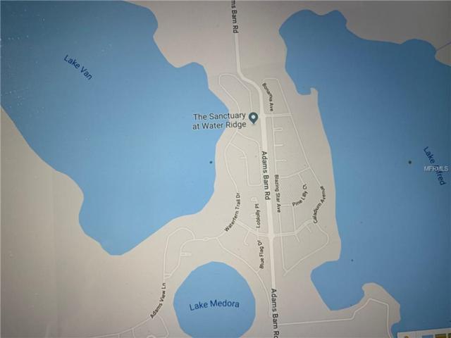 464 Bonamia Avenue, Lake Alfred, FL 33850 (MLS #P4905486) :: Baird Realty Group