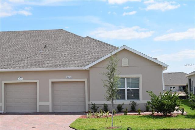 3020 Caneel Street, Winter Haven, FL 33884 (MLS #P4905633) :: The Edge Group at Keller Williams