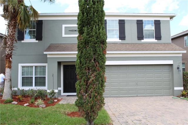 2943 Etowah Park Boulevard, Tavares, FL 32778 (MLS #P4906030) :: The Duncan Duo Team