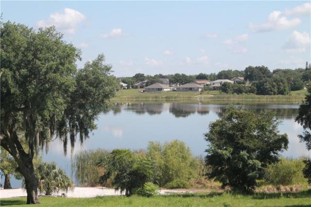 Alta Vista Drive E, Haines City, FL 33844 (MLS #P4906071) :: Team Bohannon Keller Williams, Tampa Properties