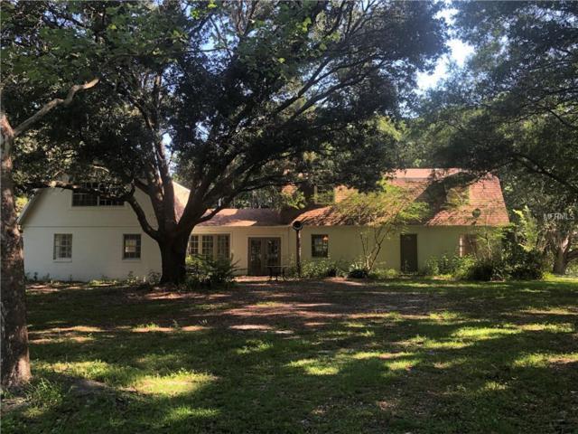 15345 Rockridge Road, Polk City, FL 33868 (MLS #P4906075) :: Team Bohannon Keller Williams, Tampa Properties