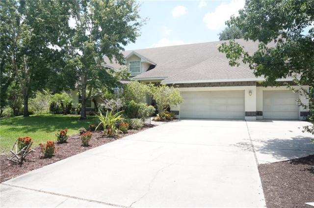 421 Willow Oak Court, Fort Meade, FL 33841 (MLS #P4906120) :: Dalton Wade Real Estate Group