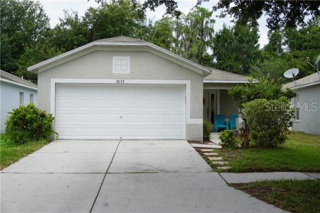 18172 Canal Pointe Street, Tampa, FL 33647 (MLS #P4906322) :: Cartwright Realty