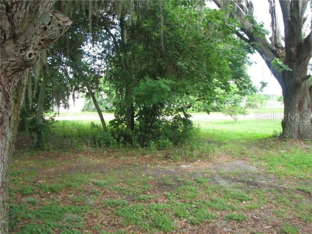 Louise Avenue, Dundee, FL 33838 (MLS #P4906459) :: The Robertson Real Estate Group