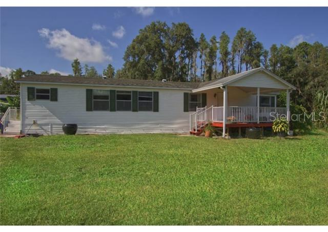 309 E Hunter Road, Plant City, FL 33565 (MLS #P4906548) :: Griffin Group