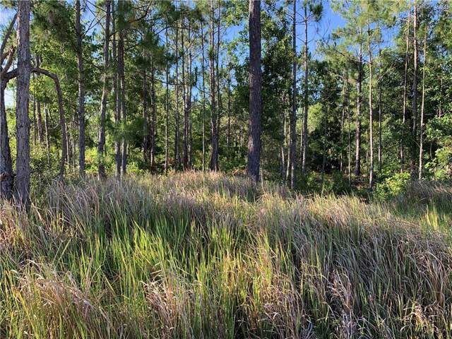 Lake Caloosa Landing, Frostproof, FL 33843 (MLS #P4906855) :: Alpha Equity Team