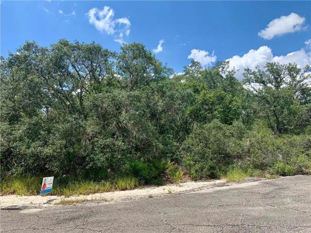Turkey Tracts Road, Frostproof, FL 33843 (MLS #P4907056) :: EXIT King Realty