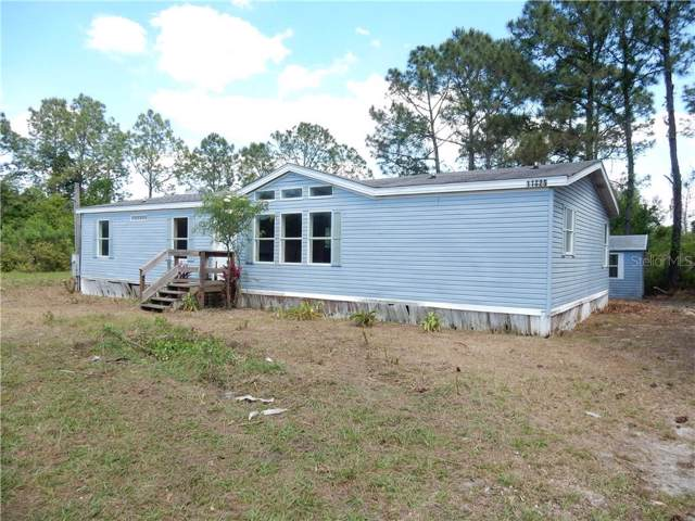 11825 Backland Path Road, Polk City, FL 33868 (MLS #P4907199) :: Team Bohannon Keller Williams, Tampa Properties